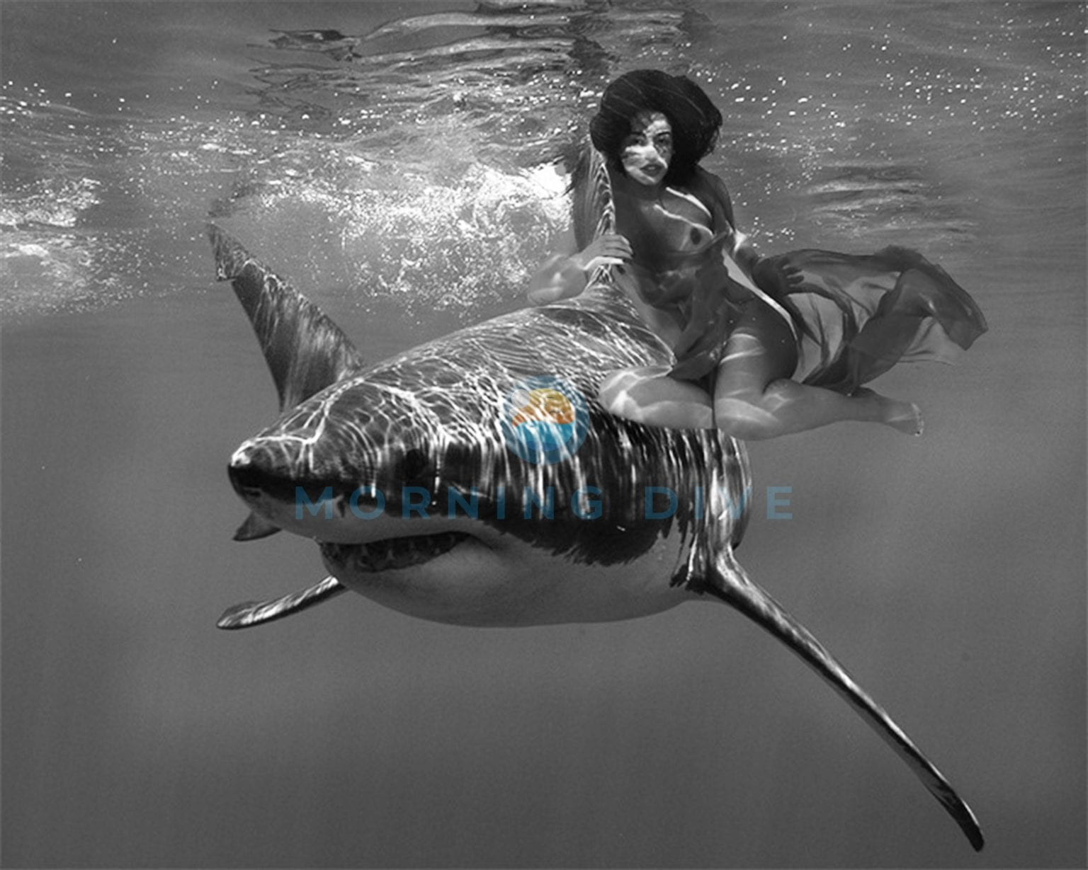 underwater photography shark with women